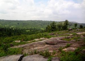 Mayur Hill