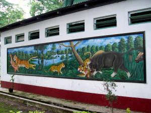 rajabhatkhawa-north-bengal