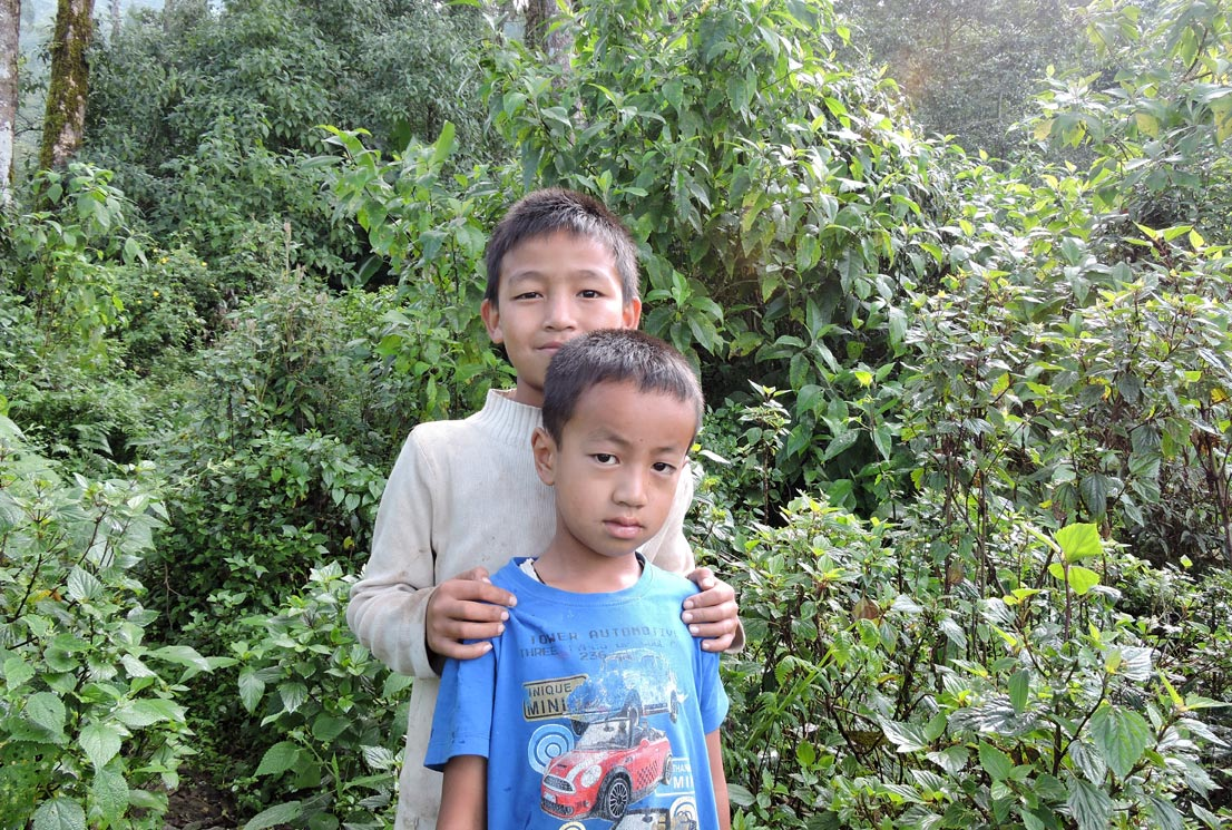 Local boys within icche village forest