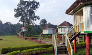 dhupjhora-elephant-camp-1